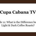 What is the Difference between Light and Dark Roasted Coffee?